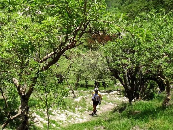Senderismo al Cerro Chalcatzingo, Jantetelco Estado de Morelos