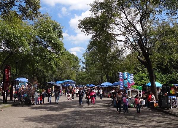 Calzada en el Bosque de Chapultepec cerca del Lago, senderismo urbano, Alcaldía Miguel Hidalgo, CDMX