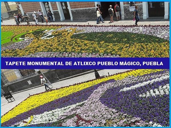 Tapete monumental de flores en el zócalo de Atlixco de las Flores Pueblo Mágico, Estado de Puebla, México, senderismo urbano